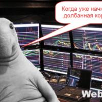 Ждать падения рынка или инвестировать